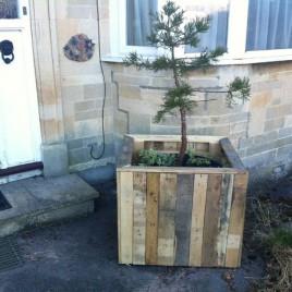 Wooden Pot Plant